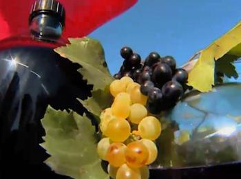 Традиция виноделия в Армении насчитывает около 6000 лет